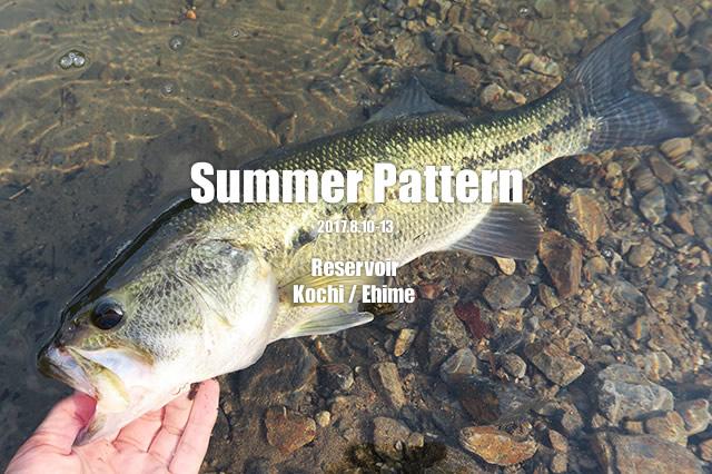 Summer Pattern 2017